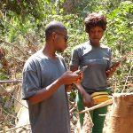 Femmes rurales et surveillance communautaire des forets